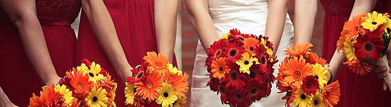 Fall wedding ideas. Event venues on the San Francisco Bay.